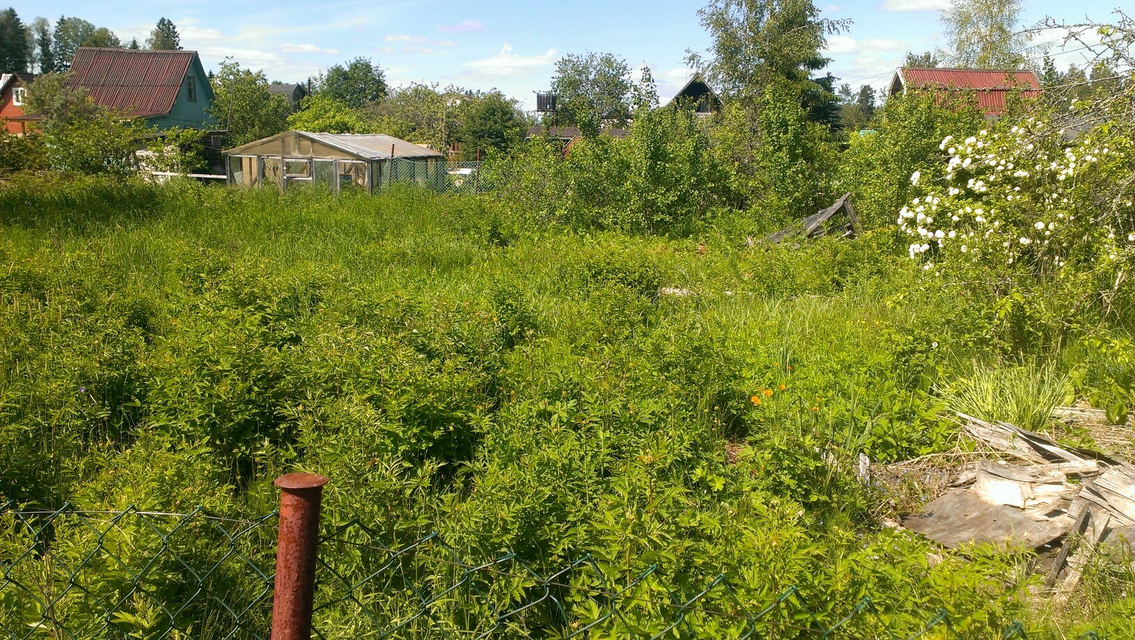 Рынок земли: под проверку попали дачные участки