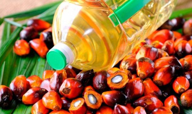 В Украине хотят запретить использование пальмового масла в пищевой промышленности