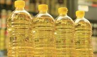 Производство масличных в Украине в текущем году вырастет на 20%